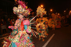 Carnaval da noite Foto de Stock
