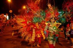 Carnaval da noite Fotos de Stock Royalty Free