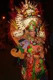 Carnaval da noite Imagem de Stock Royalty Free