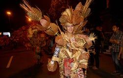 Carnaval da noite Foto de Stock Royalty Free