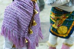 Carnaval dans les rues du village d'Aliano de Basilicate Image stock