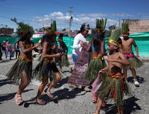 Carnaval de布兰科斯y内格罗斯岛 库存照片