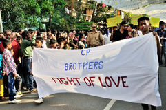 Carnaval 2015 de Cochin Imagem de Stock