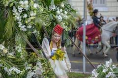 Carnaval de fleur à Nice, Frances Photographie stock libre de droits