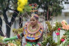 Carnaval de fleur à Nice, Frances Image libre de droits
