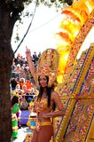Carnaval de Niza el 22 de febrero de 2012, Francia Fotografía de archivo
