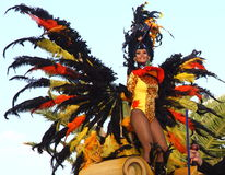 Carnaval de Santa Cruz de Tenerife Imagem de Stock
