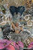 Carnaval de Tenerife Imagen de archivo