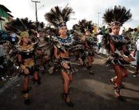 Carnaval el Brasil del festival del boi del meu de Bumba Fotografía de archivo