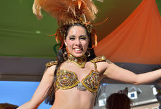 Carnaval en Nivelles Foto de archivo libre de regalías
