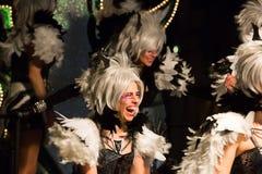 Carnaval espagnol dans la soirée Photos stock