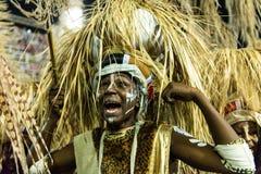 Carnaval 2019 - Mangueira fotos de stock