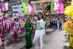 Carnaval 2019 - Mangueira fotos de stock royalty free