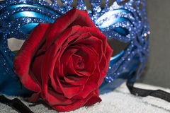 Carnaval mask with red rose Royalty Free Stock Photography