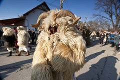 Carnaval-masker in bont in 'Busojaras', Carnaval van de begrafenis van de winter Royalty-vrije Stock Fotografie