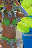 Carnaval Parade Stock Images
