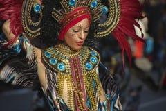 Carnaval Peso de Royaltyfri Bild