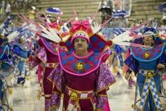 Carnaval 2019 imagens de stock royalty free