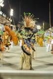 Carnaval Rio de Janeiro 2014 stock fotografie