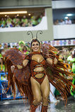 Carnaval 2014 - Rio de Janeiro Royalty-vrije Stock Afbeelding