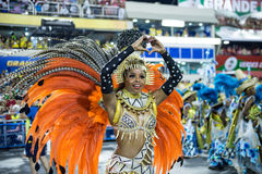 Carnaval 2014 - Rio de Janeiro Royalty-vrije Stock Afbeeldingen