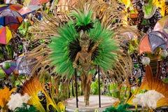 Carnaval 2014 - Rio de janeiro Foto de Stock Royalty Free