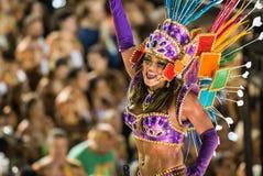 Carnaval 2014 - Rio de Janeiro Royalty-vrije Stock Foto's