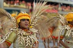 Carnaval 2019 - Unidos a Dinamarca Tijuca imagem de stock royalty free