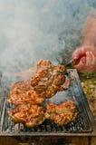 Carne al forno su carbone su un picnic nella foresta Fotografia Stock Libera da Diritti