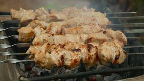 Carne arrostita appetitosa sui carboni stock footage