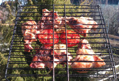 Carne arrostita deliziosa con i pomodori Immagine Stock