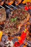 Carne arrostita deliziosa con la verdura su una griglia del barbecue Fotografie Stock Libere da Diritti