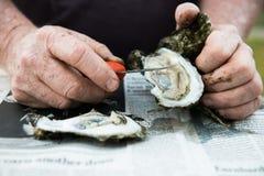 Carne asada de la ostra con las ostras crudas en medio Shell fotografía de archivo