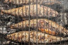 Carne asada de los pescados Fotografía de archivo