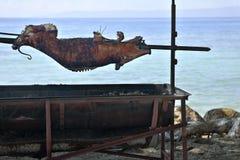 Carne asada del cerdo por el agua Fotografía de archivo
