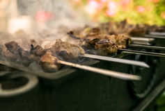 Carne asada en el fuego Fotografía de archivo