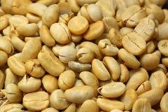 Carne asada fresca de los granos de café no fotos de archivo