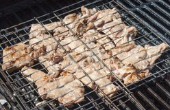 Carne asada a la parrilla en accesorio especial Imagen de archivo