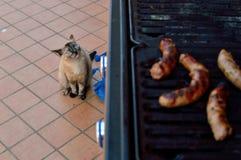Carne asada a la parrilla en la barbacoa fuera de la terraza de la casa fotografía de archivo libre de regalías