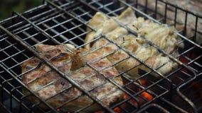 Carne asada a la parrilla en la parrilla llameante metrajes