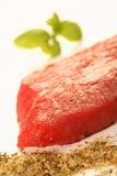 Carne, basilico e spezia Fotografie Stock