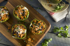 Carne casalinga e peperoni dolci farciti riso Fotografie Stock