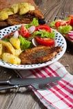 Carne cotta con insalata Fotografie Stock