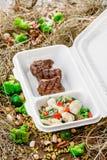 Carne cotta con la verdura fresca Consegna dell'alimento Fotografia Stock