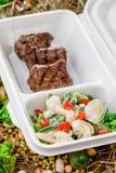 Carne cotta con la verdura fresca Consegna dell'alimento Fotografia Stock Libera da Diritti
