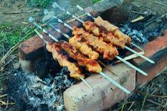 A carne cozinhou nos carvões de uma fogueira imagens de stock royalty free