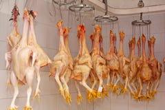 Carne crua da galinha imagens de stock