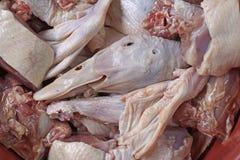 Carne crua dos patos Imagem de Stock Royalty Free