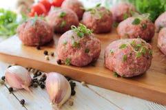 Carne cruda con le erbe Immagine Stock