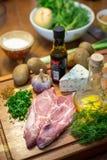 Carne cruda ed ingredienti Immagine Stock Libera da Diritti